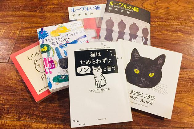 LIGHT WORKS WEB Magazine コラム:猫に学ぶ猫式ライフ